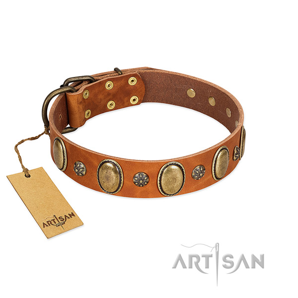 Everyday use reliable genuine leather dog collar with studs