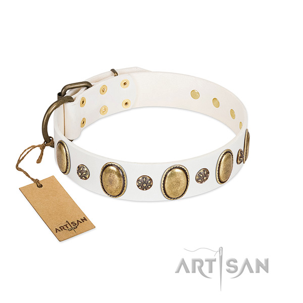 Stylish walking soft to touch full grain leather dog collar with decorations