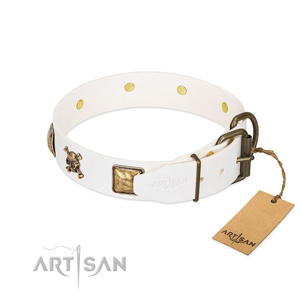 Unique natural leather dog collar with rust resistant embellishments