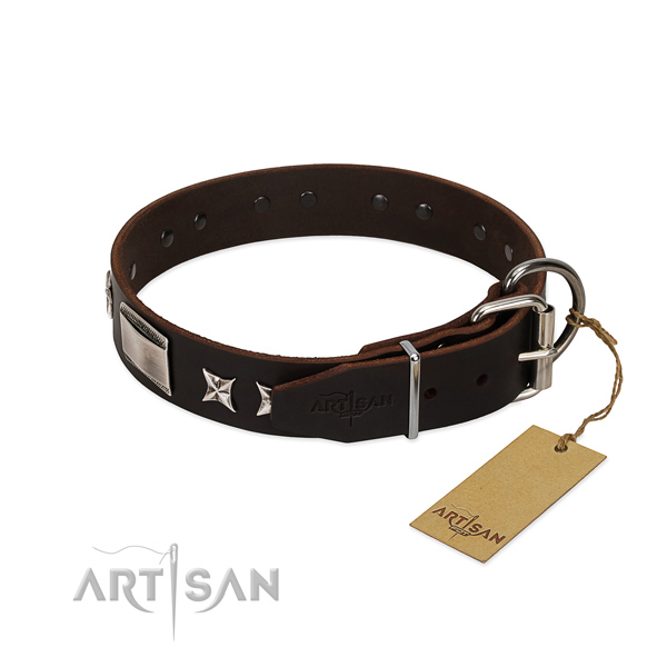 Trendy collar of full grain leather for your handsome dog
