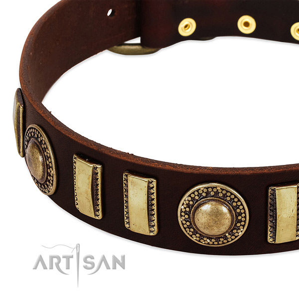 Best quality full grain leather dog collar with strong fittings