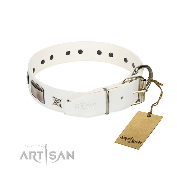 Embellished collar of full grain genuine leather for your stylish pet