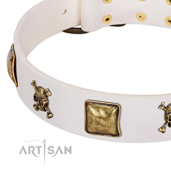 Significant natural leather dog collar with strong decorations