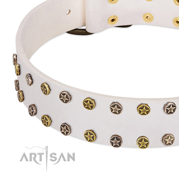Fashionable adornments on leather collar for your doggie