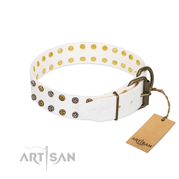 Natural leather collar with amazing adornments for your pet