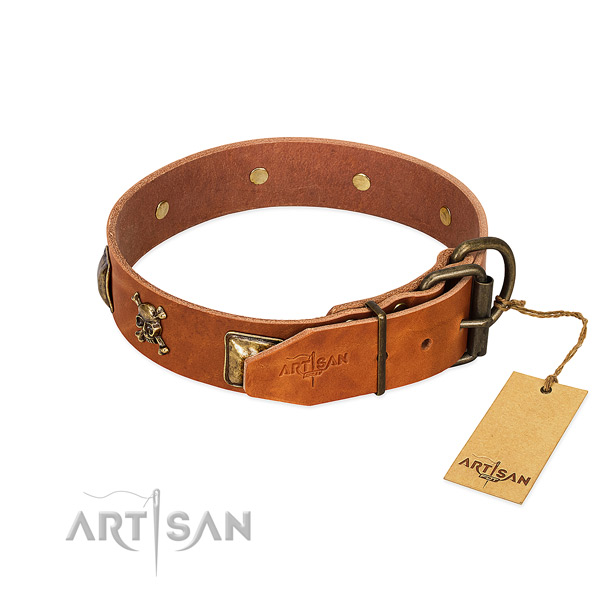 Incredible full grain leather dog collar with strong decorations