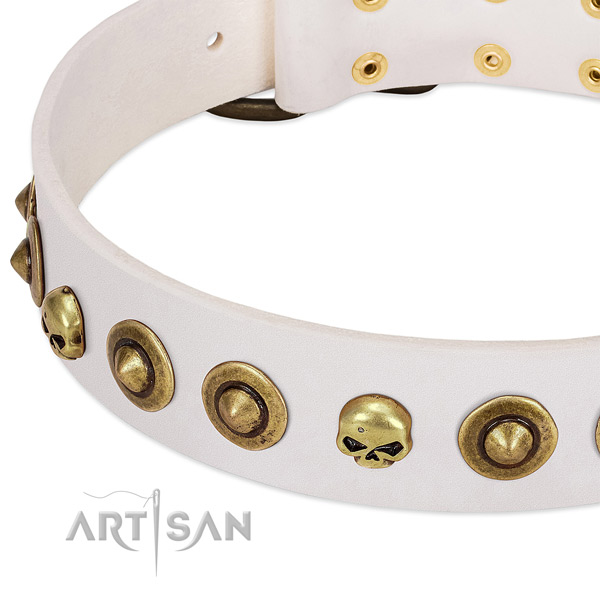 Impressive embellishments on full grain genuine leather collar for your doggie