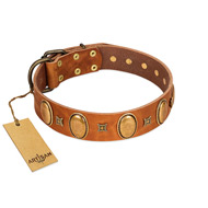 """Glossy Autumn"" Designer Handmade FDT Artisan Tan Leather Bulldog Collar with Ovals and Studs"