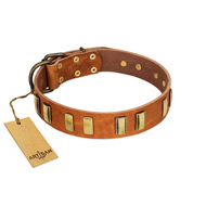 """Olive Slice"" FDT Artisan Tan Leather Bulldog Collar with Engraved and Smooth Plates"
