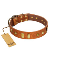 """Woofy Dawn"" FDT Artisan Tan Leather Bulldog Collar with Plates and Rhombs"