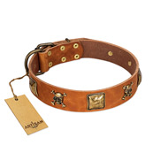"""Knights Templar"" FDT Artisan Tan Leather Bulldog Collar with Skulls and Crossbones Combined with Squares"