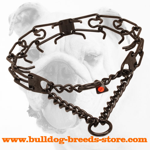 Black stainless steel prong collar for badly behaved canines