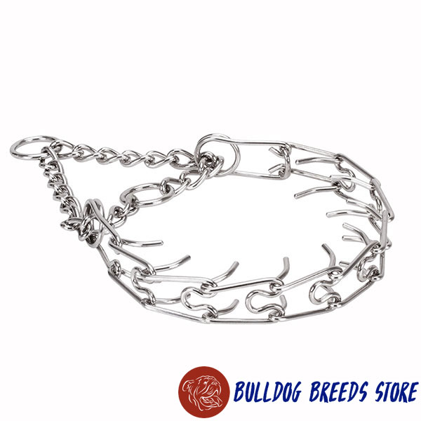 Stainless steel prong collar for badly behaved canines