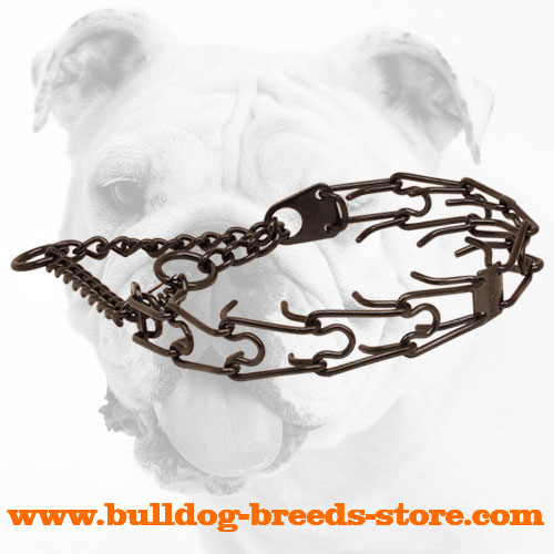 Pinch collar of rust resistant black stainless steel for ill behaved pets