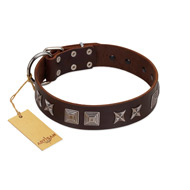 """Needle Stories"" Modern FDT Artisan Brown Leather Bulldog Collar with Square Engraved Plates and Four-Point Stars"