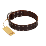 """Star Party"" Handmade FDT Artisan Brown Leather Bulldog Collar with Silver-Like Studs"