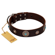 """Magic Stones"" FDT Artisan Brown Leather Bulldog Collar with Chrome Plated Brooches and Studs"