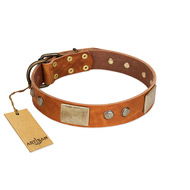 """Ancient Treasures"" FDT Artisan Tan Leather Bulldog Collar with Antiqued Plates and Studs"