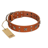 """Faraway Galaxy"" FDT Artisan Tan Leather Bulldog Collar Adorned with Stars and Squares"