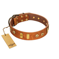 """Egyptian Script"" FDT Artisan Tan Leather Bulldog Collar with Plates and Small Studs"