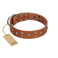 """Enchanted Skulls"" FDT Artisan Tan Leather Bulldog Collar with Chrome Plated Skulls"