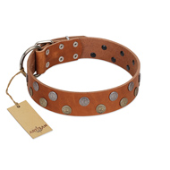 """Ancient Symbol"" Trendy FDT Artisan Tan Leather Bulldog Collar with Silver- and Gold-Like Studs"