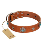 """Marine Antiques"" Handmade FDT Artisan Tan Leather Bulldog Collar with Blue Stones"