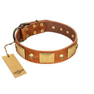 """Mutt The Daredevil"" FDT Artisan Tan Leather Bulldog Collar with Old Bronze-like Skulls and Plates"