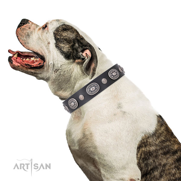 Rust resistant buckle and D-ring on genuine leather dog collar for stylish walks
