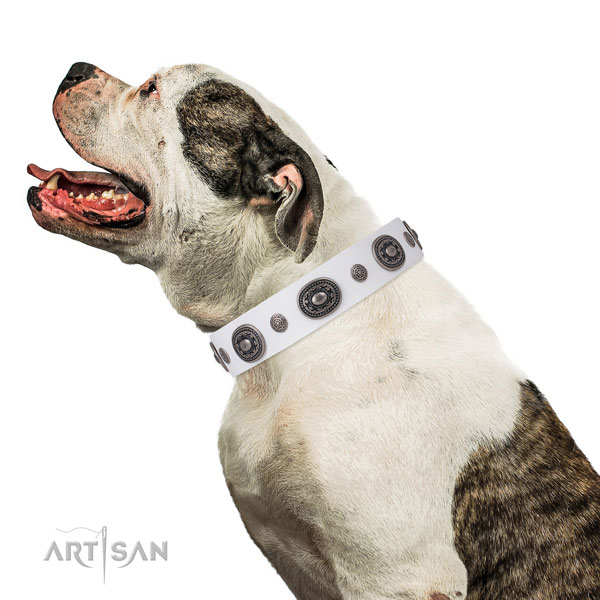 Natural leather dog collar with corrosion resistant buckle and D-ring for walking