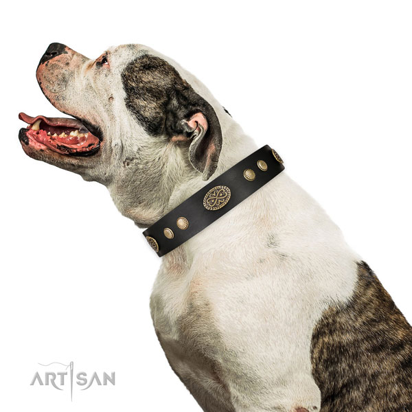 Strong D-ring on natural leather dog collar for comfy wearing