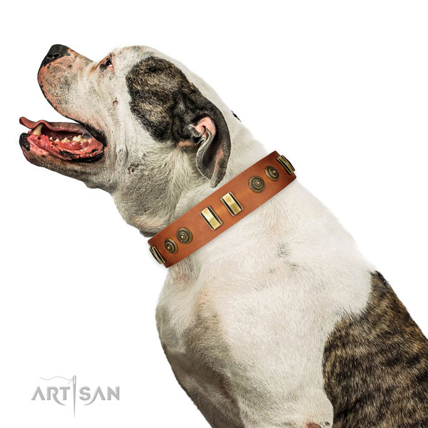 Rust-proof D-ring on natural leather dog collar for everyday walking