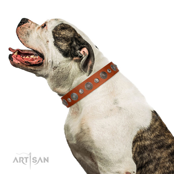 Decorated full grain genuine leather dog collar with rust resistant D-ring