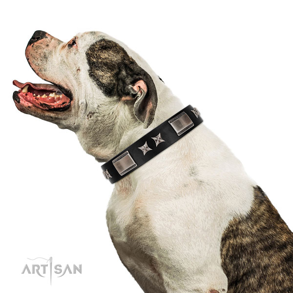 Stylish walking best quality full grain natural leather dog collar with embellishments