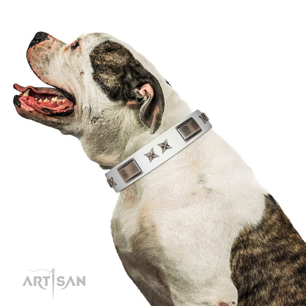 Top quality collar of full grain genuine leather for your impressive dog