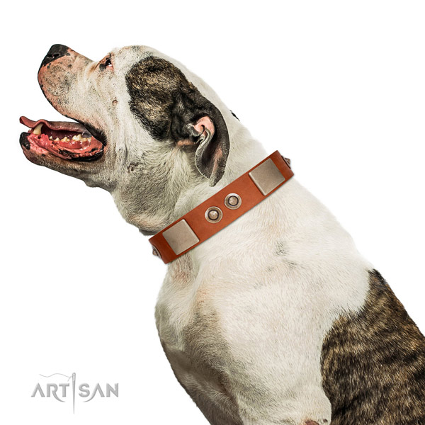Strong hardware on full grain genuine leather dog collar for easy wearing