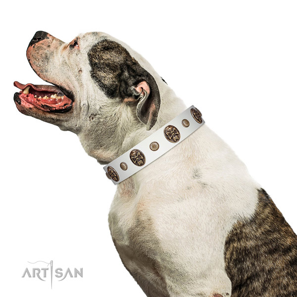 Full grain natural leather dog collar with unique adornments