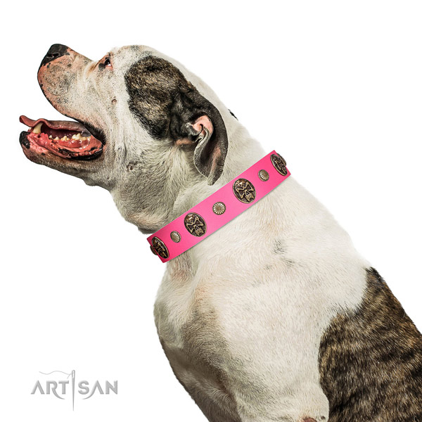 Rust-proof buckle on genuine leather dog collar for everyday walking