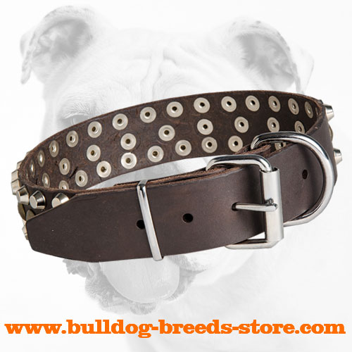 Steel Nickel Plated Buckle on Leather Bulldog Collar with Stylish Decorations