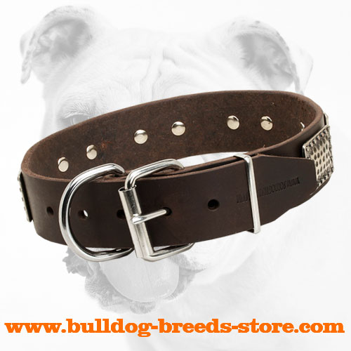 Strong Buckle of Training Leather Bulldog Collar