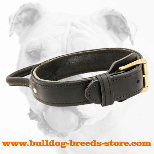 Ply Leather Bulldog Collar with Buckle for Walking