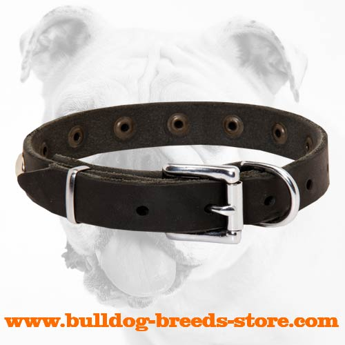 Adjustable Walking Leather Bulldog Collar with Strong Nickel Buckle