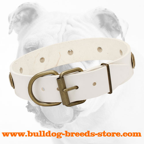 Strong Buckle on Adjustable Leather Dog Collar for Bulldog with Oval Plates
