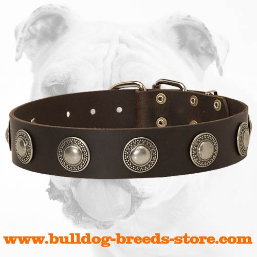 Comfortable Training Leather Bulldog Collar