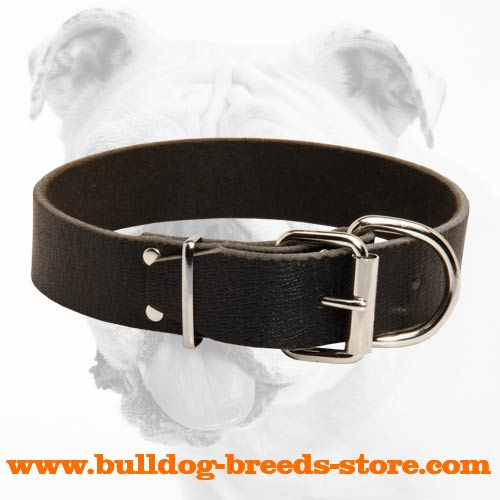 Hand-Made Leather Bulldog Collar with Nickel Fittings
