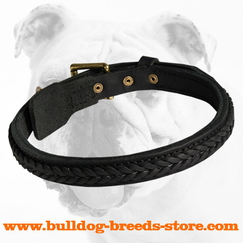 Walking Braided Leather Bulldog Collar