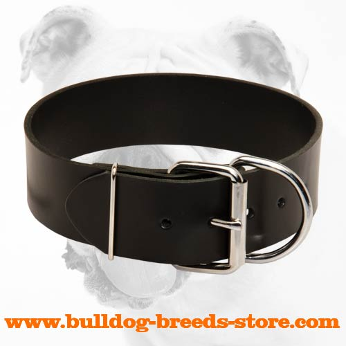 Simple Walking Leather Bulldog Collar with Buckle