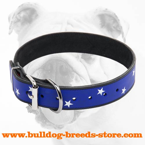 American Pride Walking Leather Bulldog Collar with Nickel Buckle