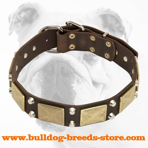 Adjustable Training Leather Bulldog Collar with Brass Plates and Nickel Cones