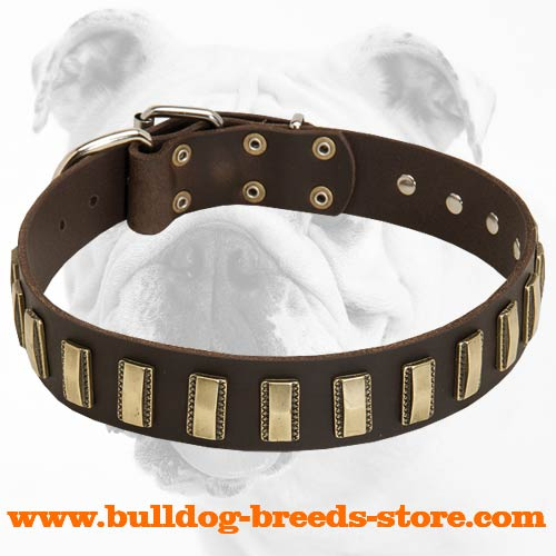 Super Strong Bulldog Collar